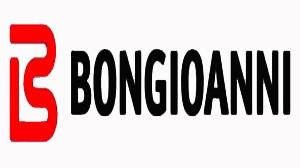assistenza caldaie bongioanni